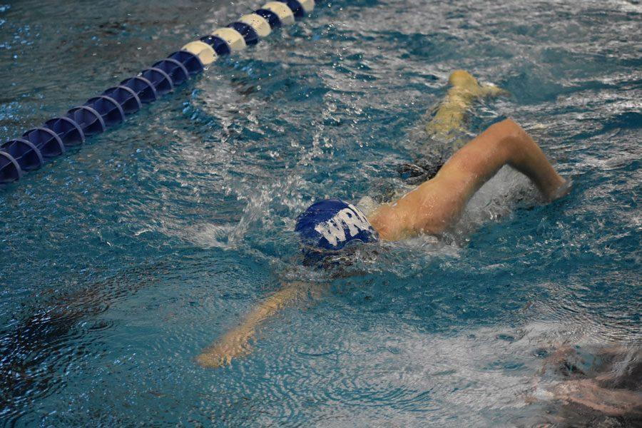 Senior Will Collins swims the freestyle during the team's second place finish at the City meet on Jan. 26.