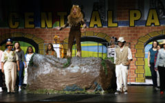 Take a trip on the wild side with: Madagascar the musical
