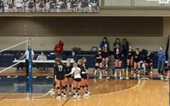 Volleyball Photo Gallery